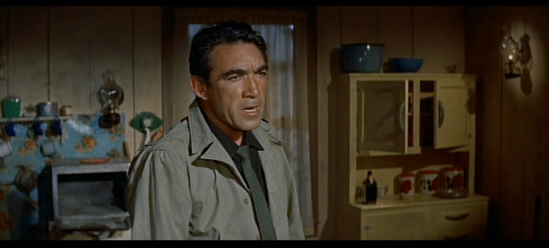 a Allan Dwan The Rivers Edge Ray Milland Anthony Quinn RIVERSEDGE-4(1)