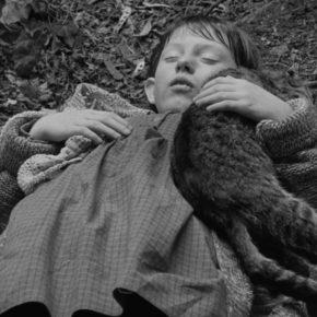 A Cinema for the People: Sátántangó